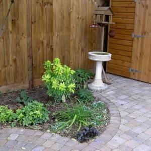 Alpha Sett Garden After